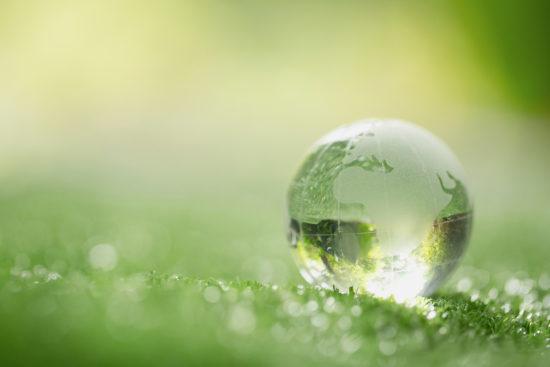 impact écologique du web